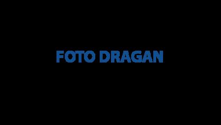 Foto Dragan